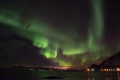 Aurore boréale aux îles Lofoten (Norvège)