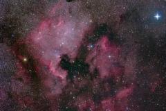 NGC7000 60x90s à 800 iso Fuji S5Pro défiltré focale 120mm